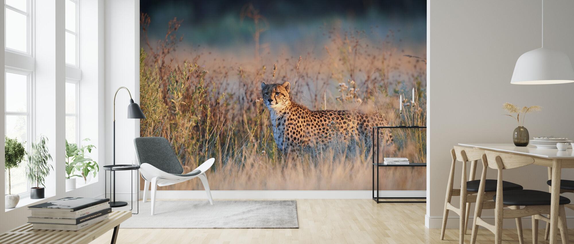 Jachtluipaard in het ochtendlicht - Behang - Woonkamer