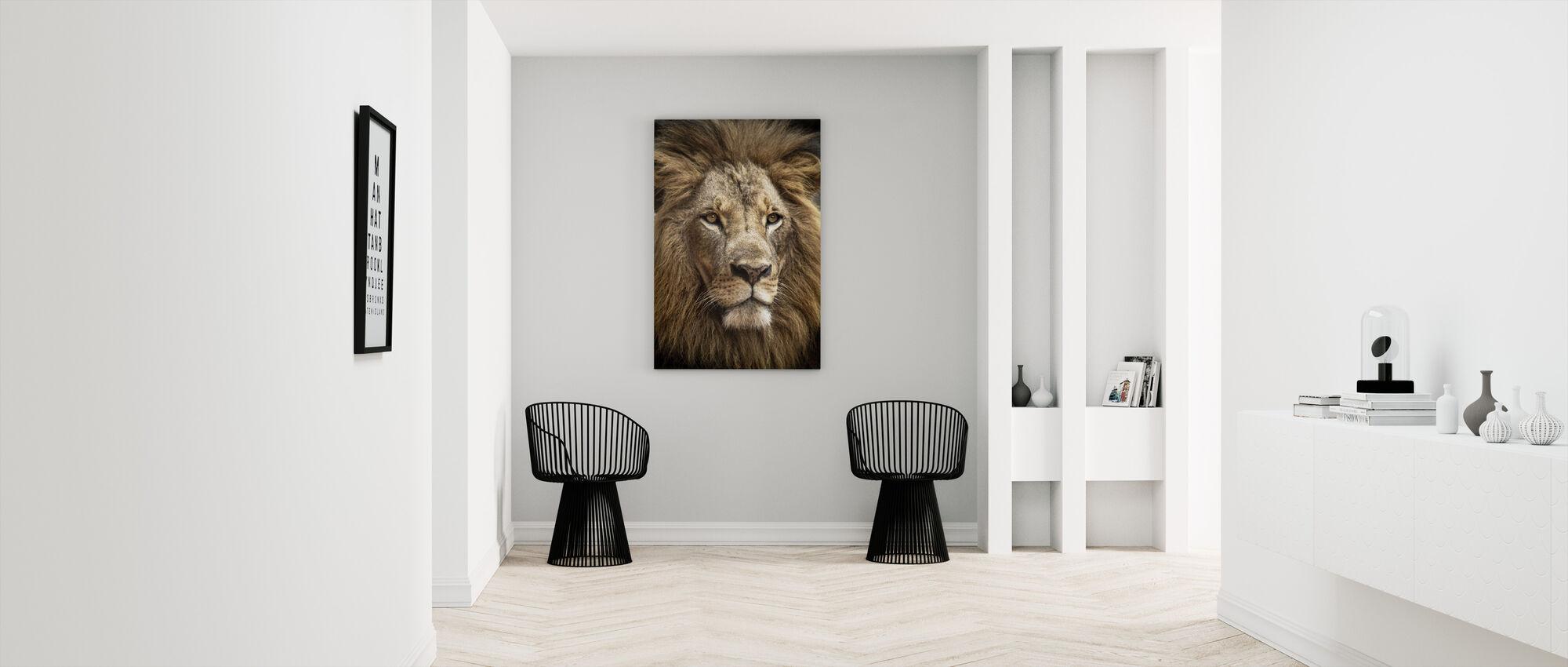 Stunning Lion - Canvas print - Hallway