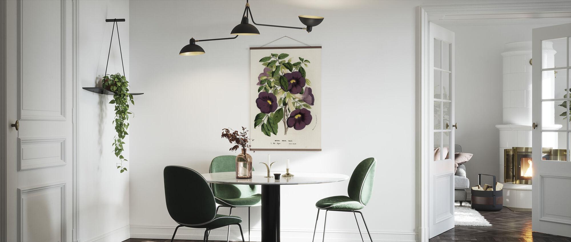 Bush Clockvine and Kingsmantle - Poster - Kitchen