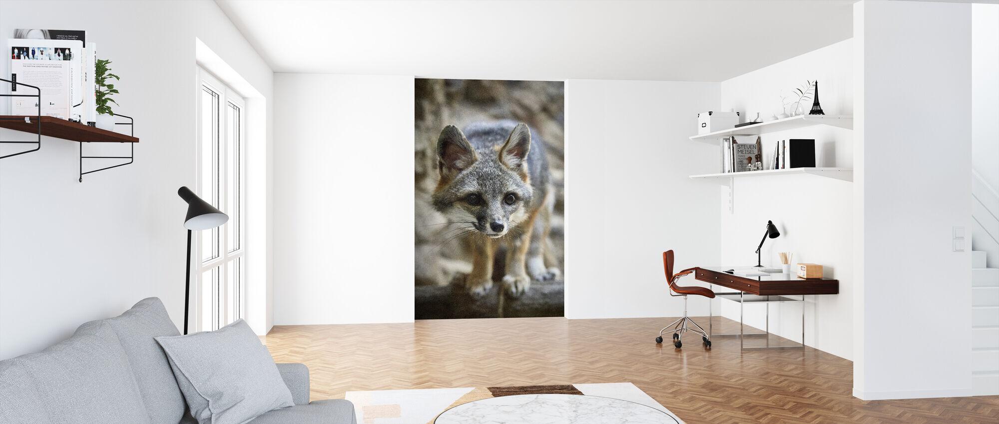 Lite Fox - Tapet - Kontor