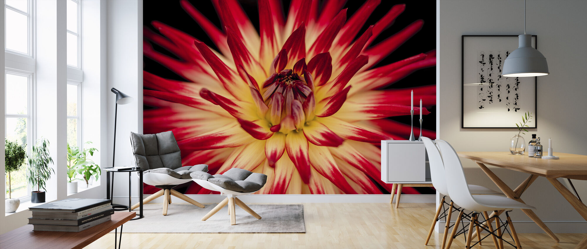 Yellow and Red Flower - Wallpaper - Living Room