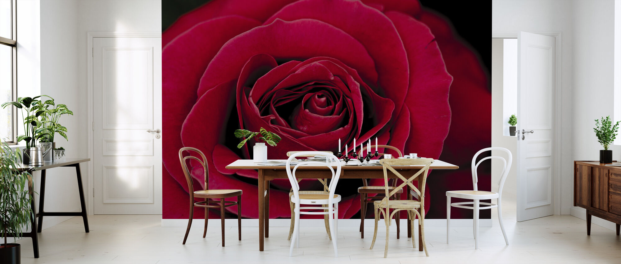 Red Rose - Wallpaper - Kitchen