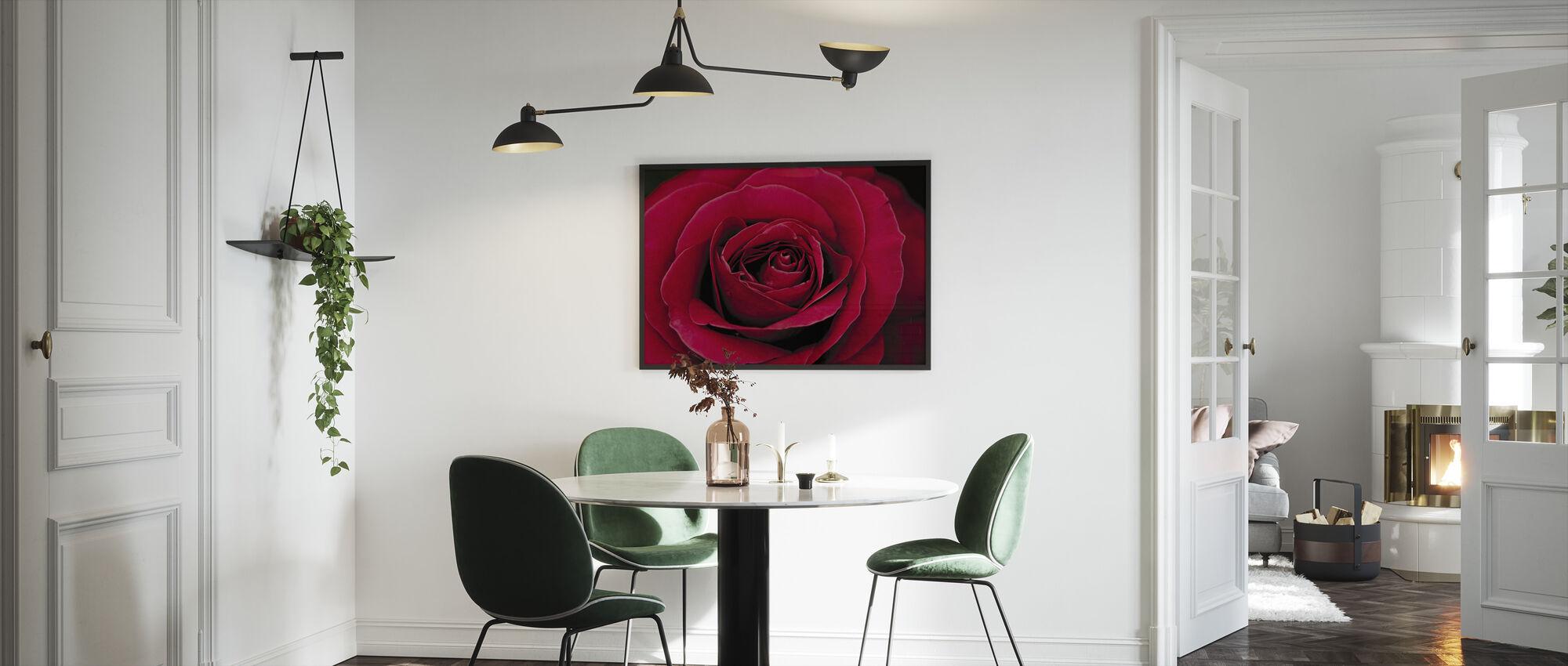 Punainen Ruusu - Kehystetty kuva - Keittiö