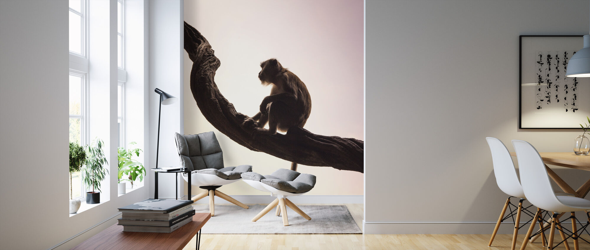 Lang tailed Macaque - Tapete - Wohnzimmer