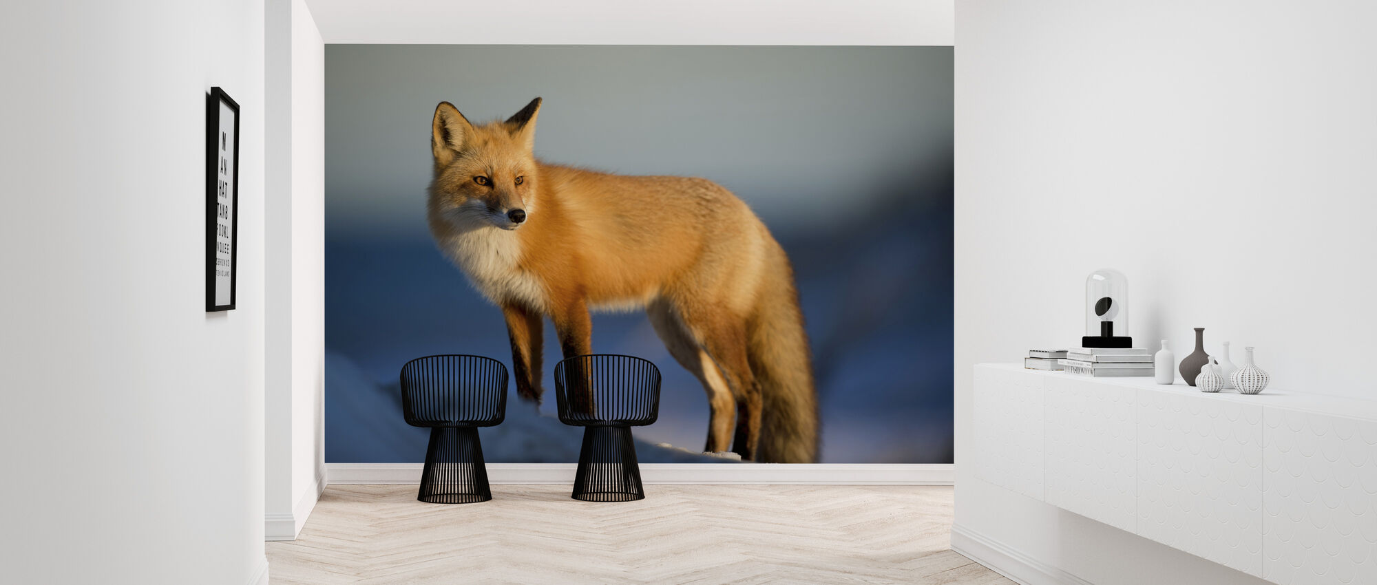 Stirring Fox - Tapet - Gang