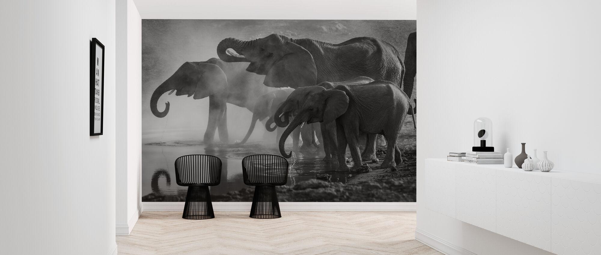 Elephants at Waterhole - Wallpaper - Hallway