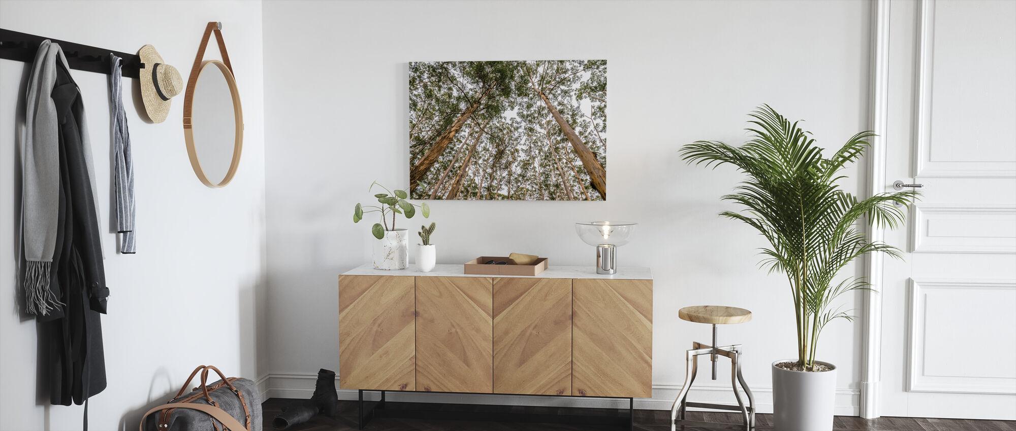 Korkeat metsät puut - Canvastaulu - Aula