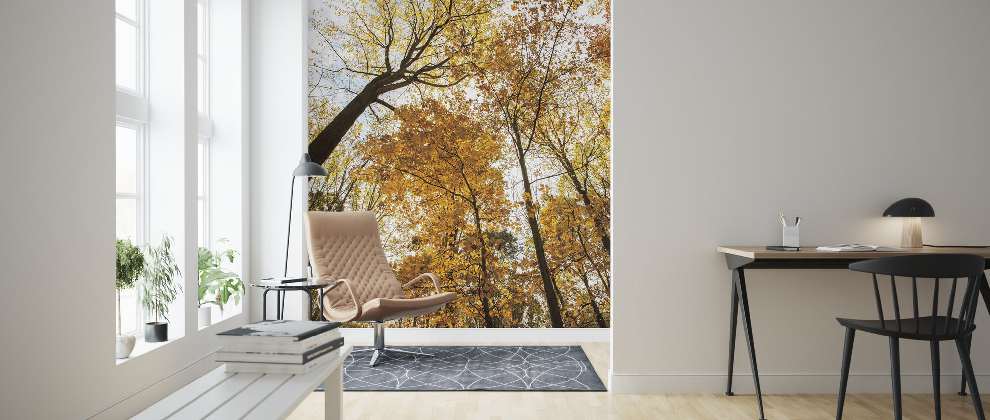 Towering Trees II - Wallpaper - Living Room