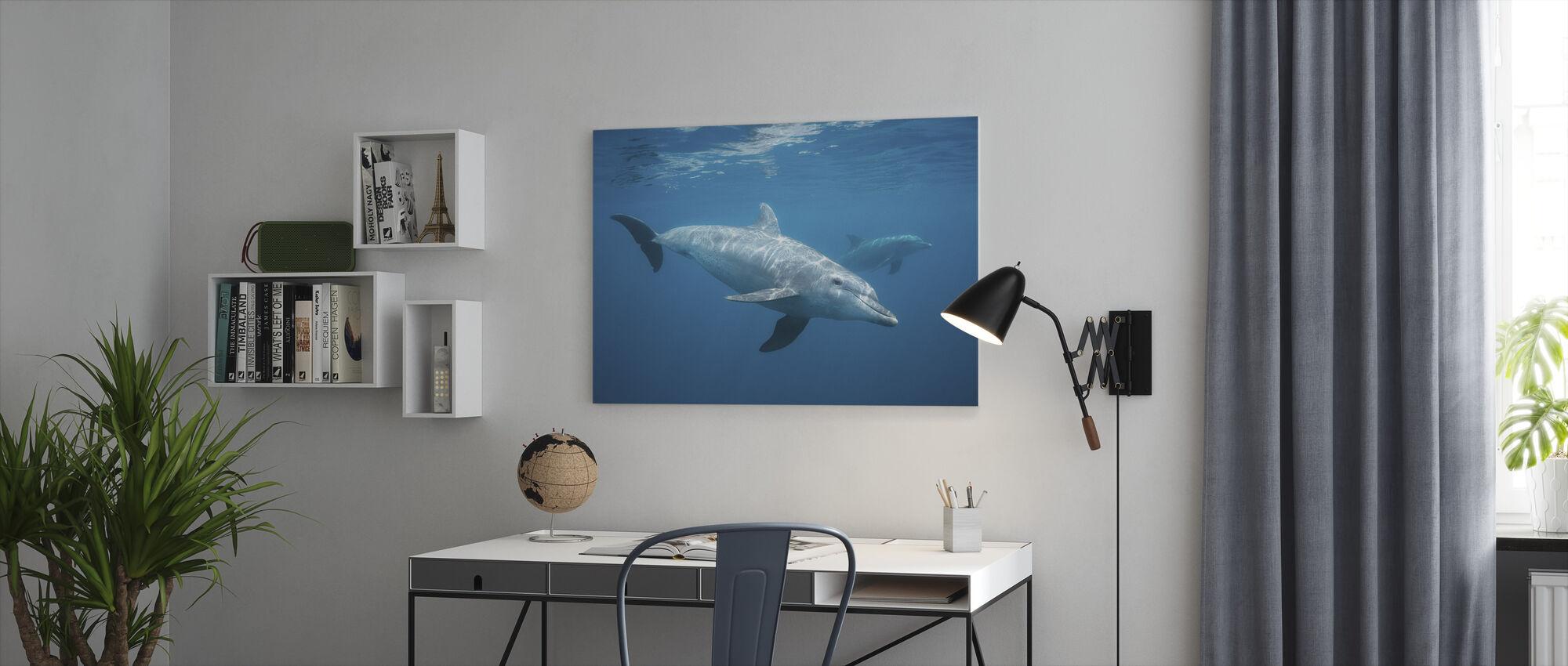Nieuwsgierig Dolfijn - Canvas print - Kantoor