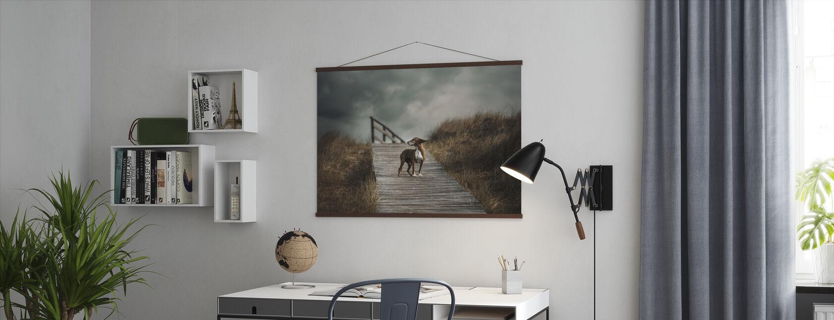 Dog on Boardwalk - Poster - Office