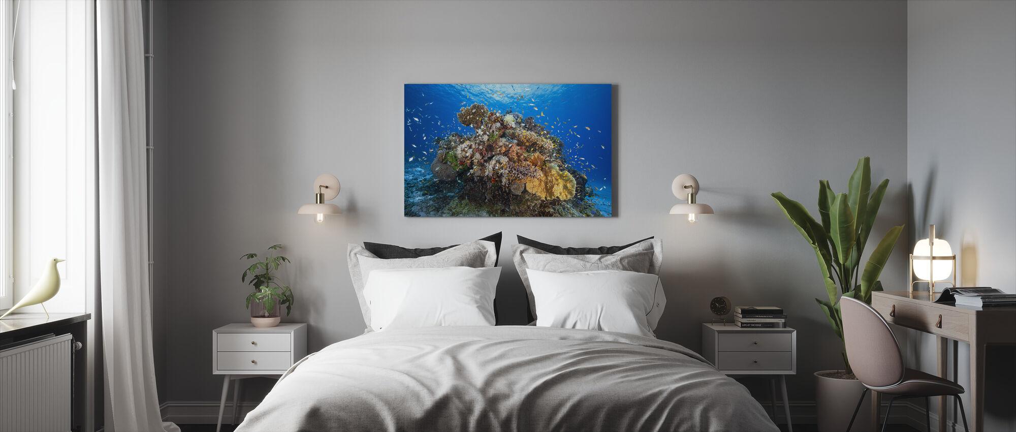 Marine Biodiversity - Canvas print - Bedroom