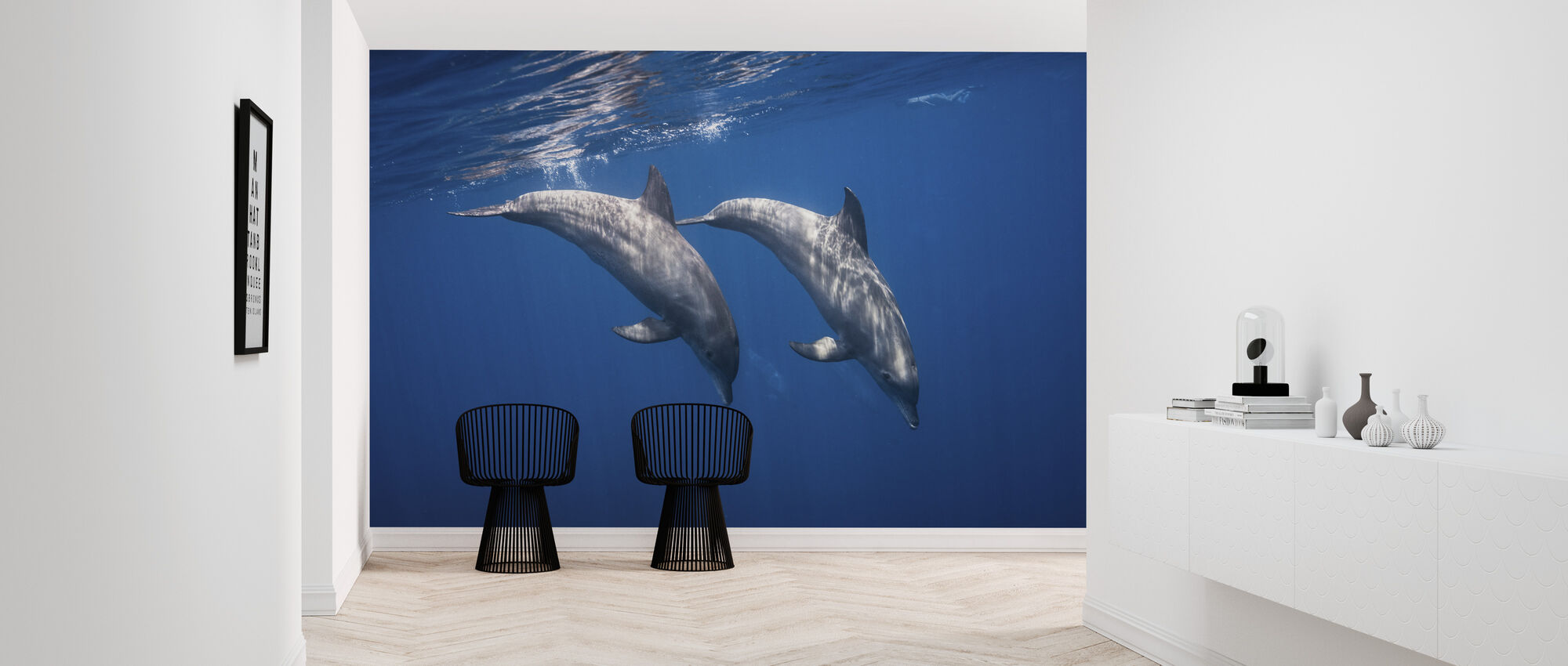 Two Bottlenose Dolphins - Wallpaper - Hallway