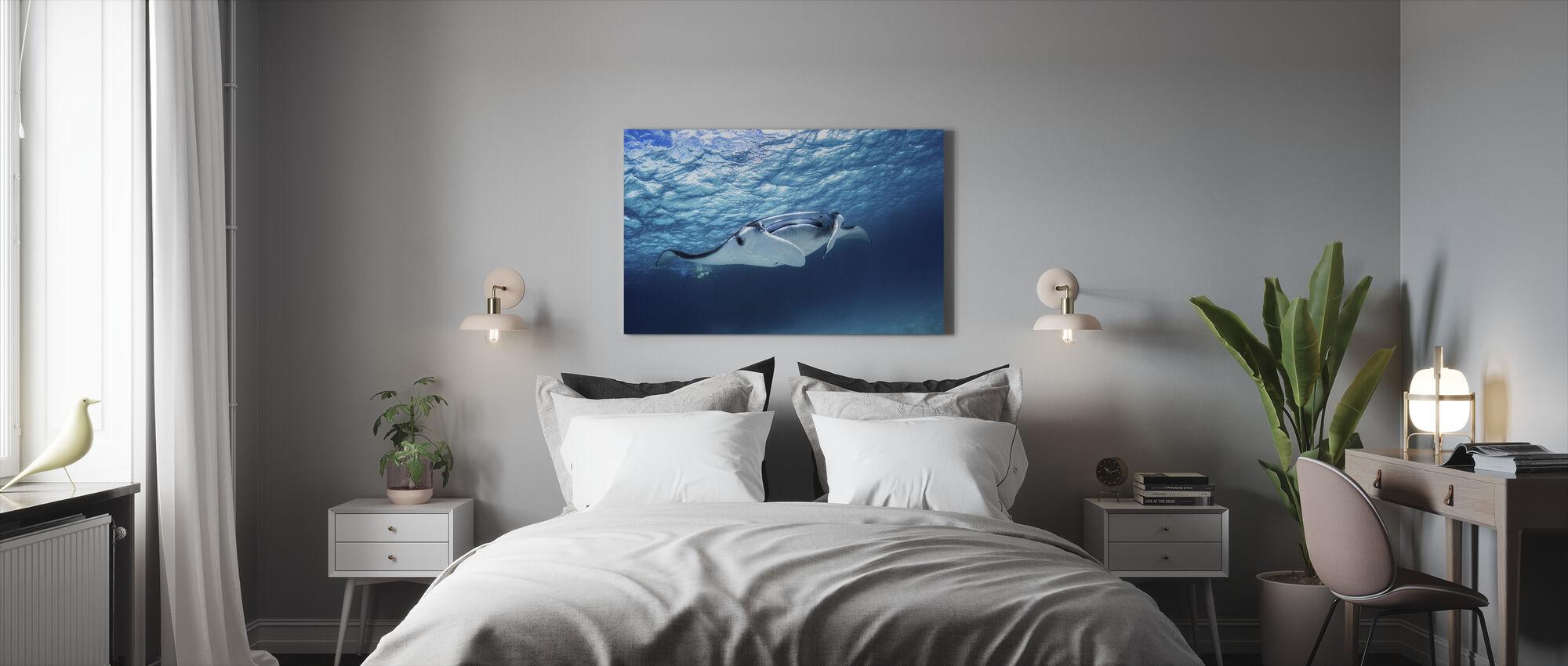 Manta Ray - Canvas print - Bedroom