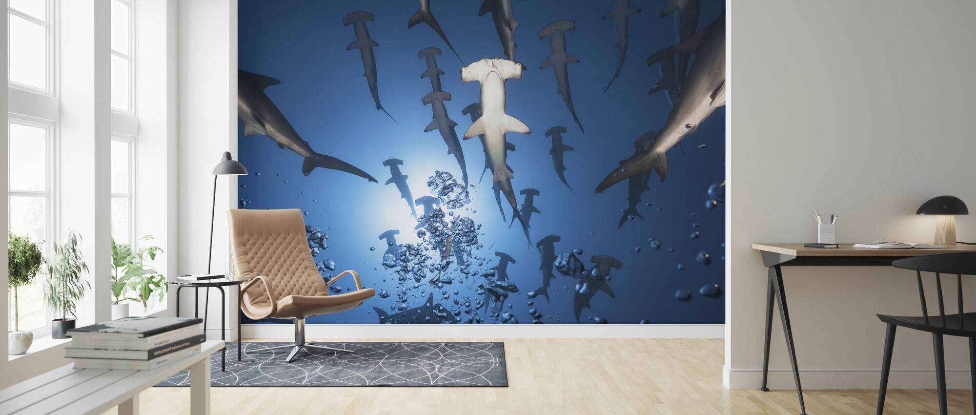 Hammerhead Shark - Wallpaper - Living Room
