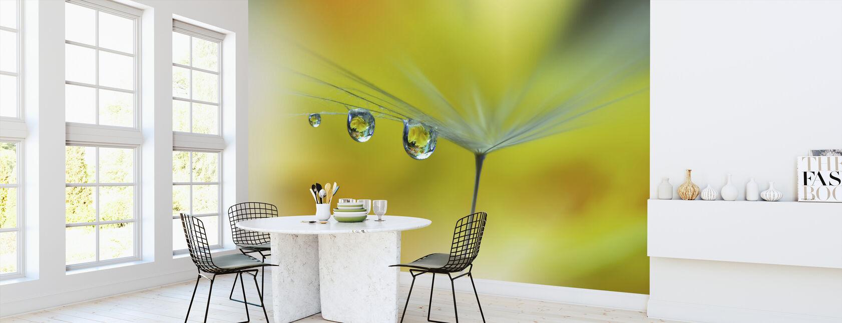 Solstrålen - Tapet - Kjøkken