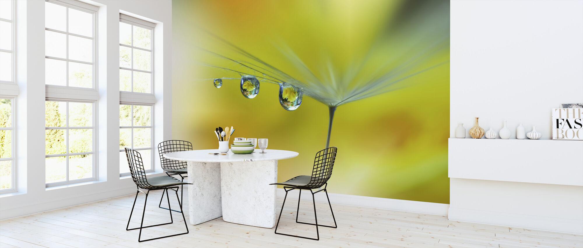 Solstrålen - Tapet - Køkken