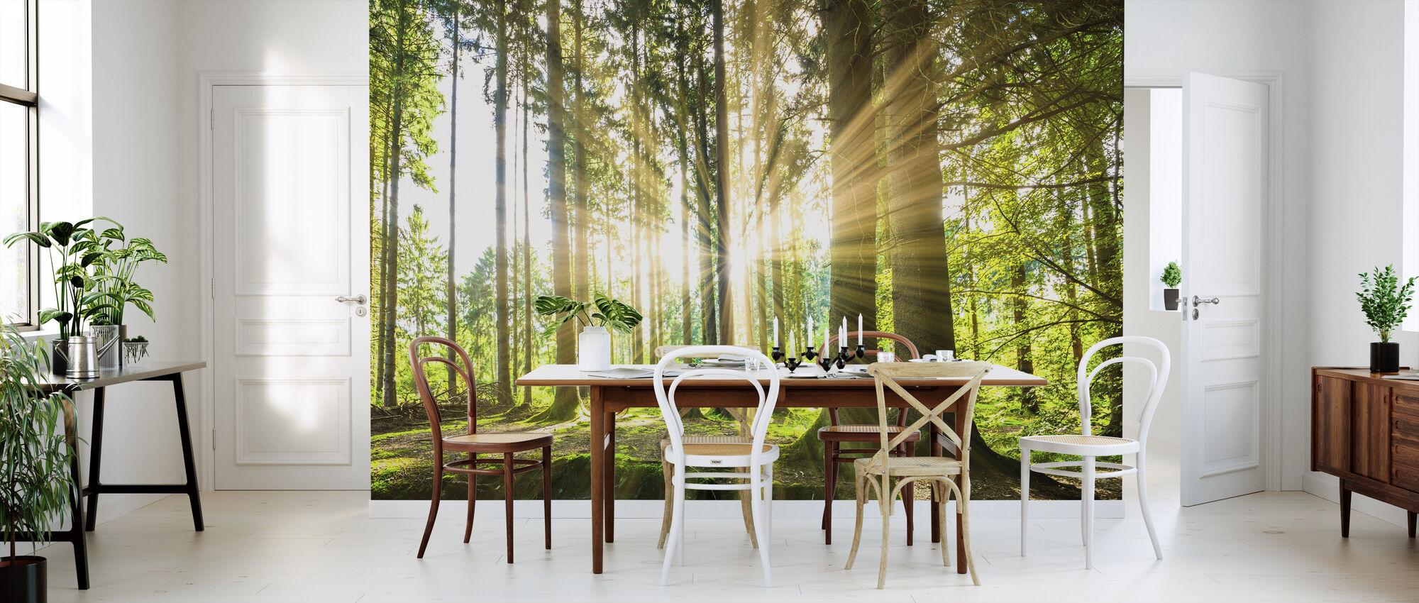 Metsä auringon kanssa - Tapetti - Keittiö