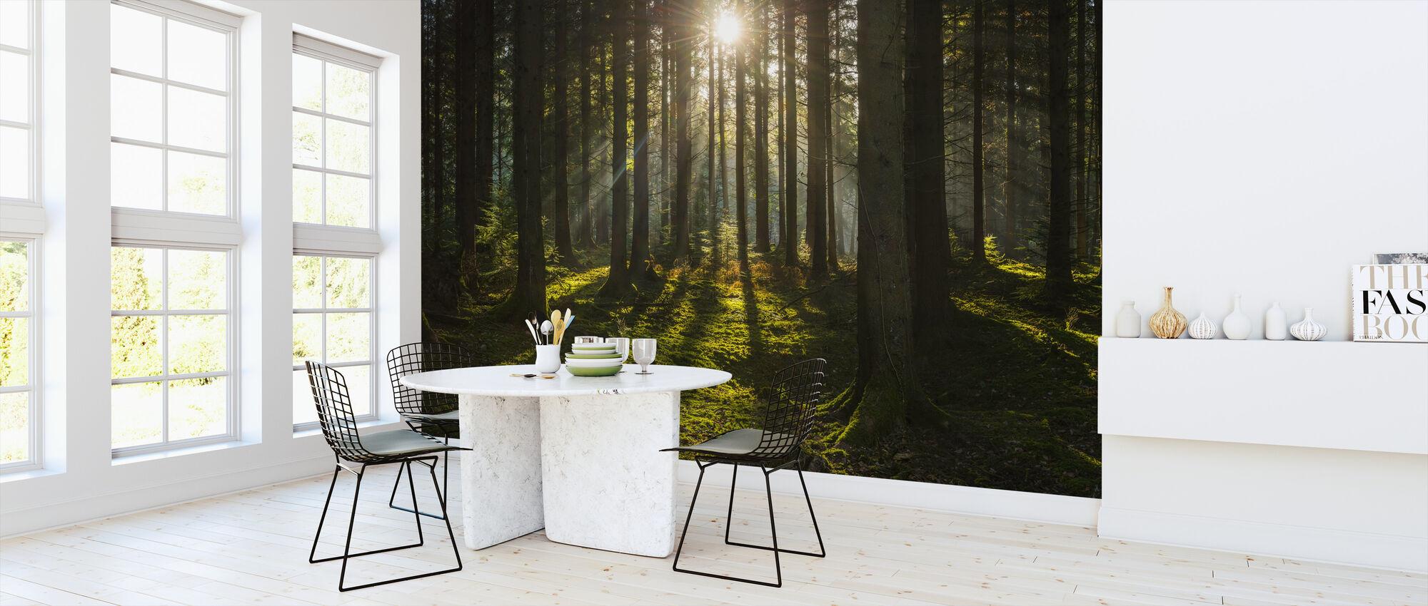Furusskog villmark - Tapet - Kjøkken
