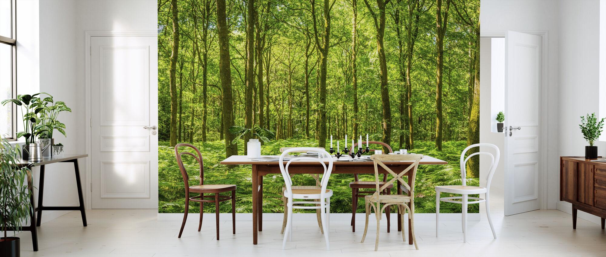 Warming Green Forest - Wallpaper - Kitchen