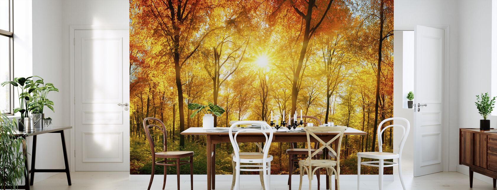 Bosque de otoño - Papel pintado - Cocina
