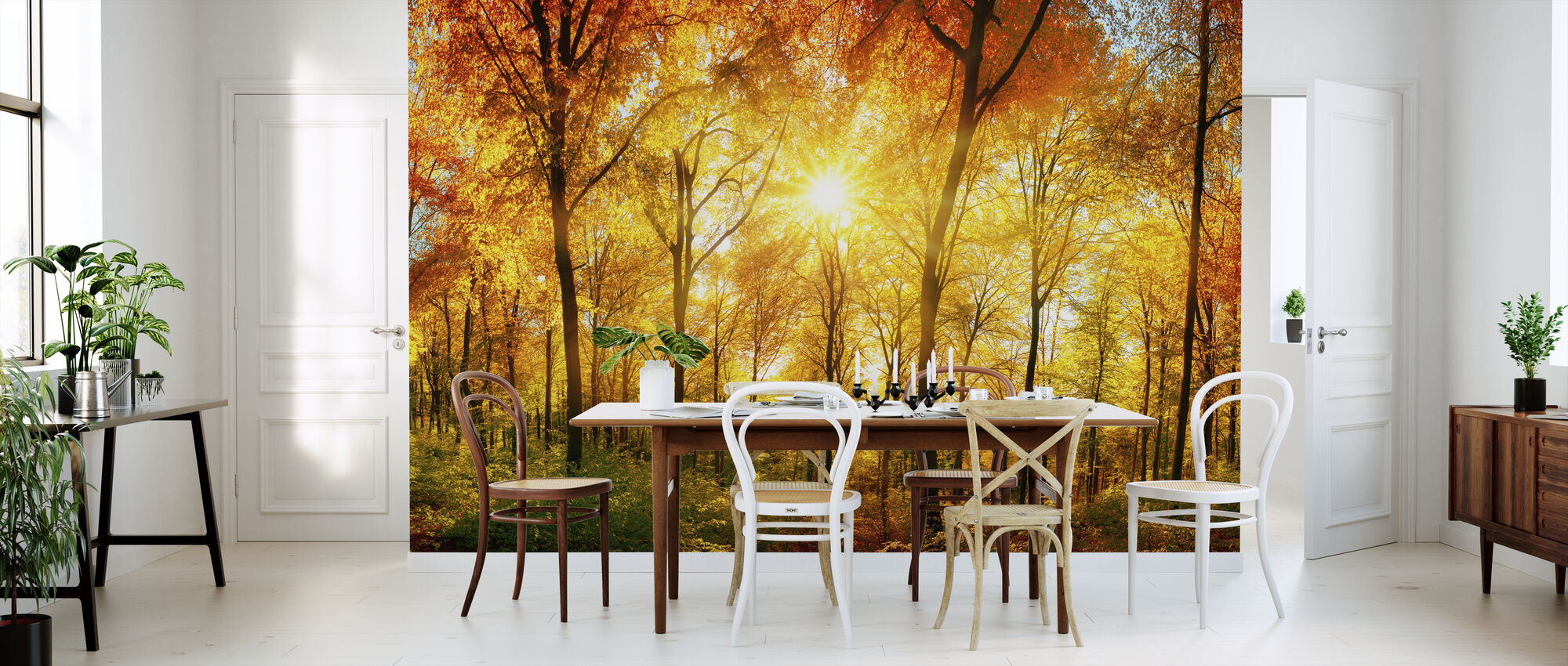 Autumn Forest - Wallpaper - Kitchen