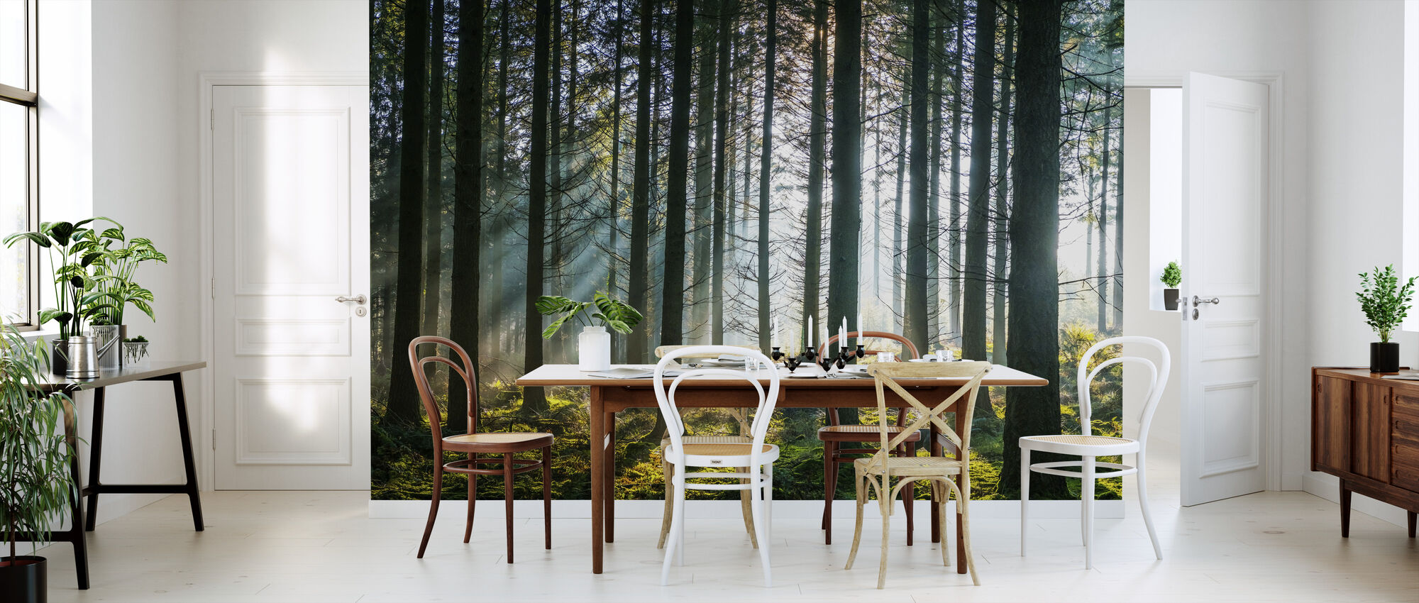 Misty Pine Forest - Wallpaper - Kitchen