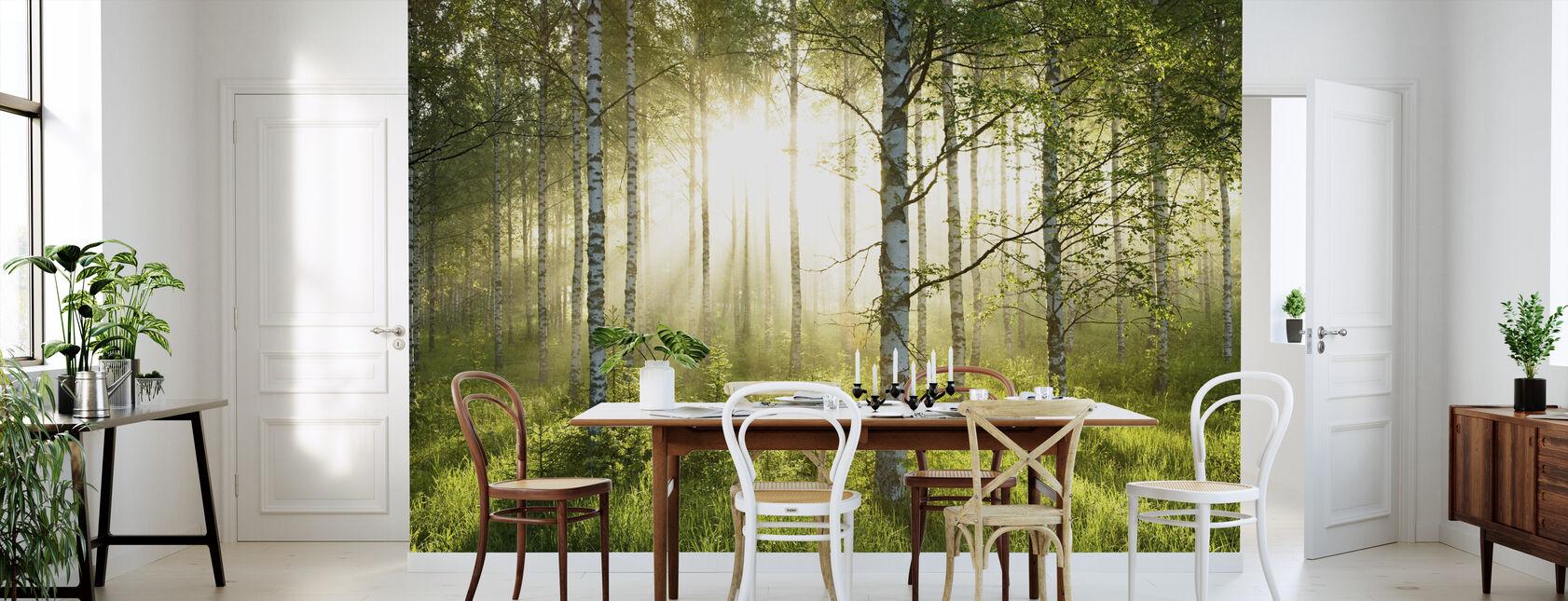 Bjørketrær Skov - Tapet - Kjøkken