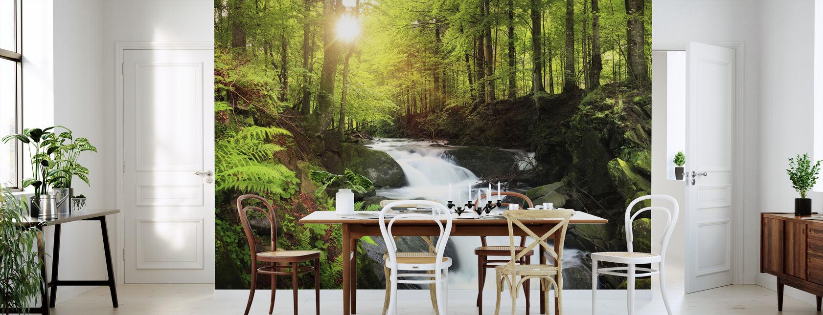 Gebirgsbach Wasserfall - Tapete - Küchen