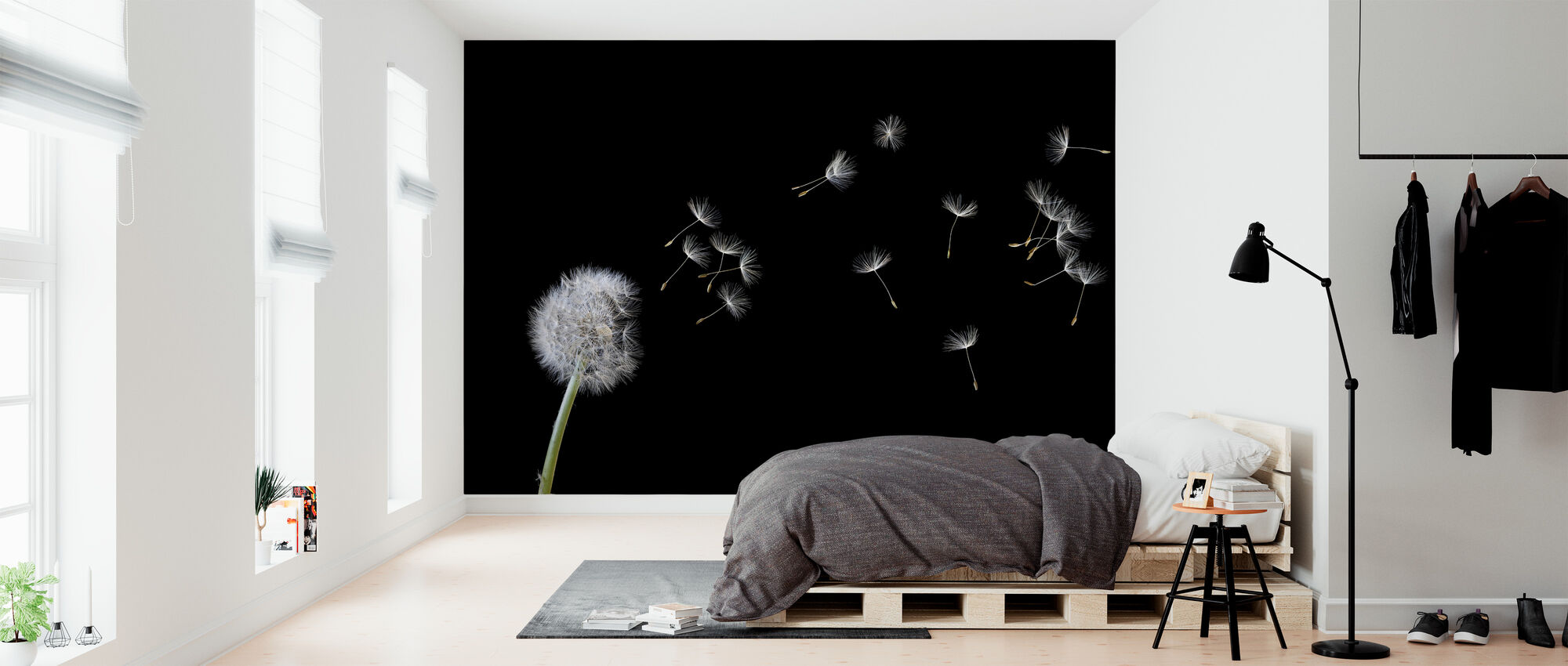 Blown Dandelion - Wallpaper - Bedroom
