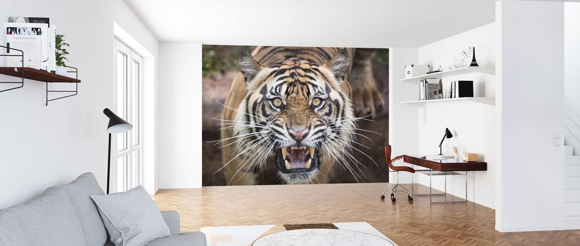 Roaring Tiger - Wallpaper - Office