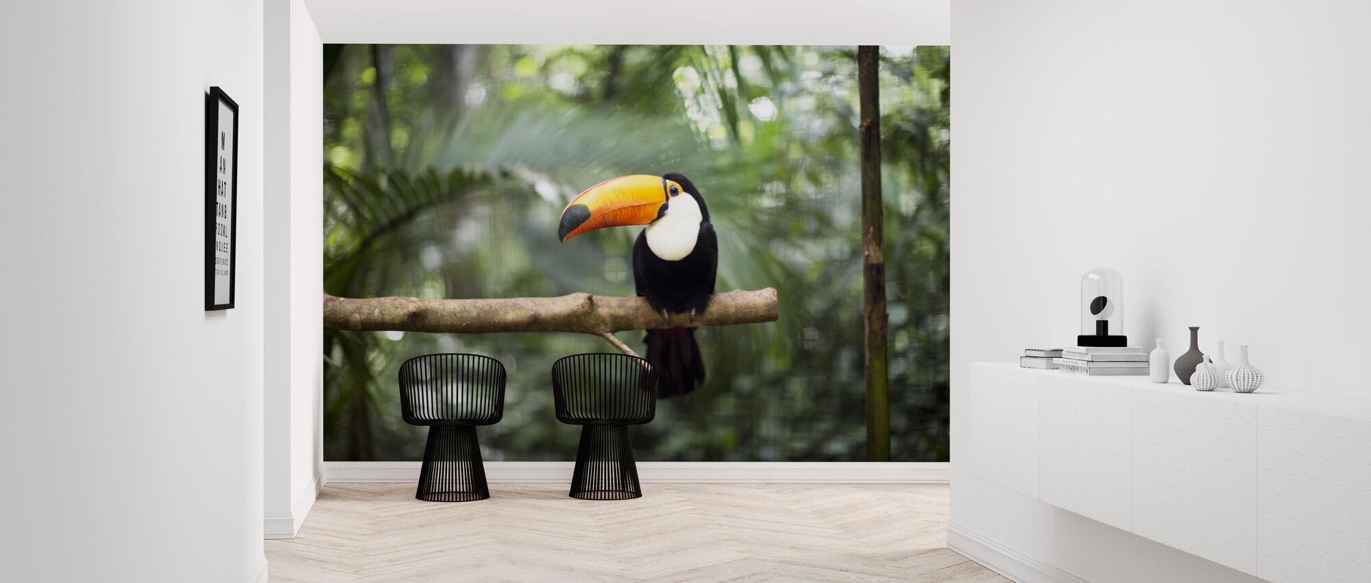 Tukan auf dem Zweig - Tapete - Flur