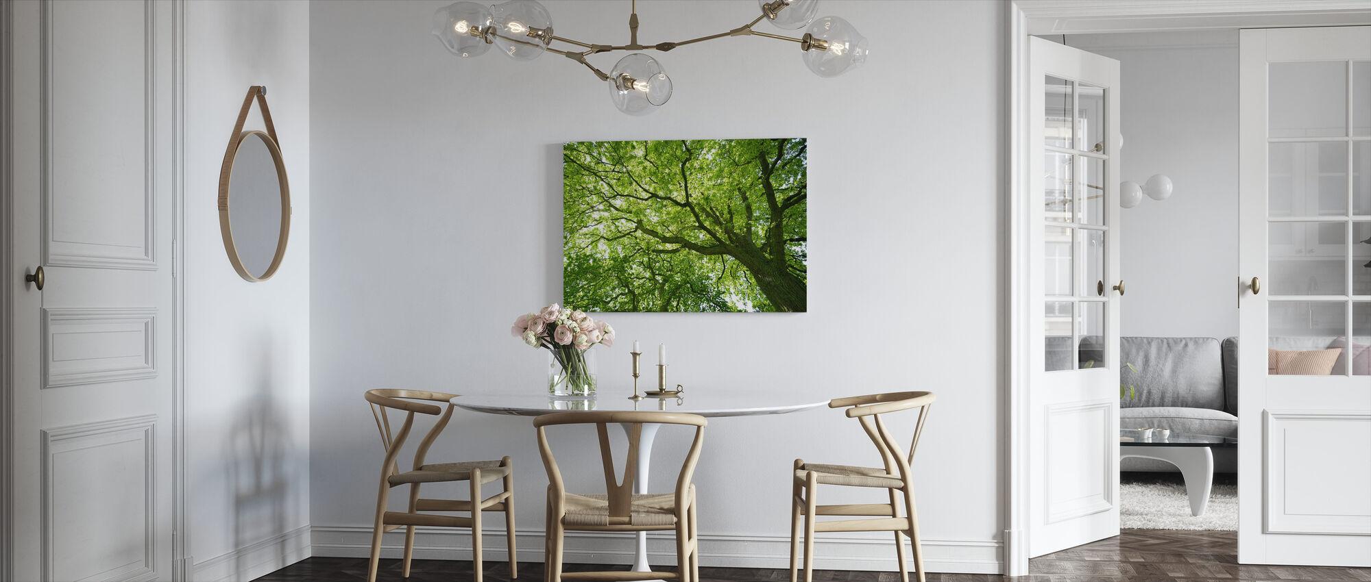 Mighty Oak Tree - Canvas print - Kitchen