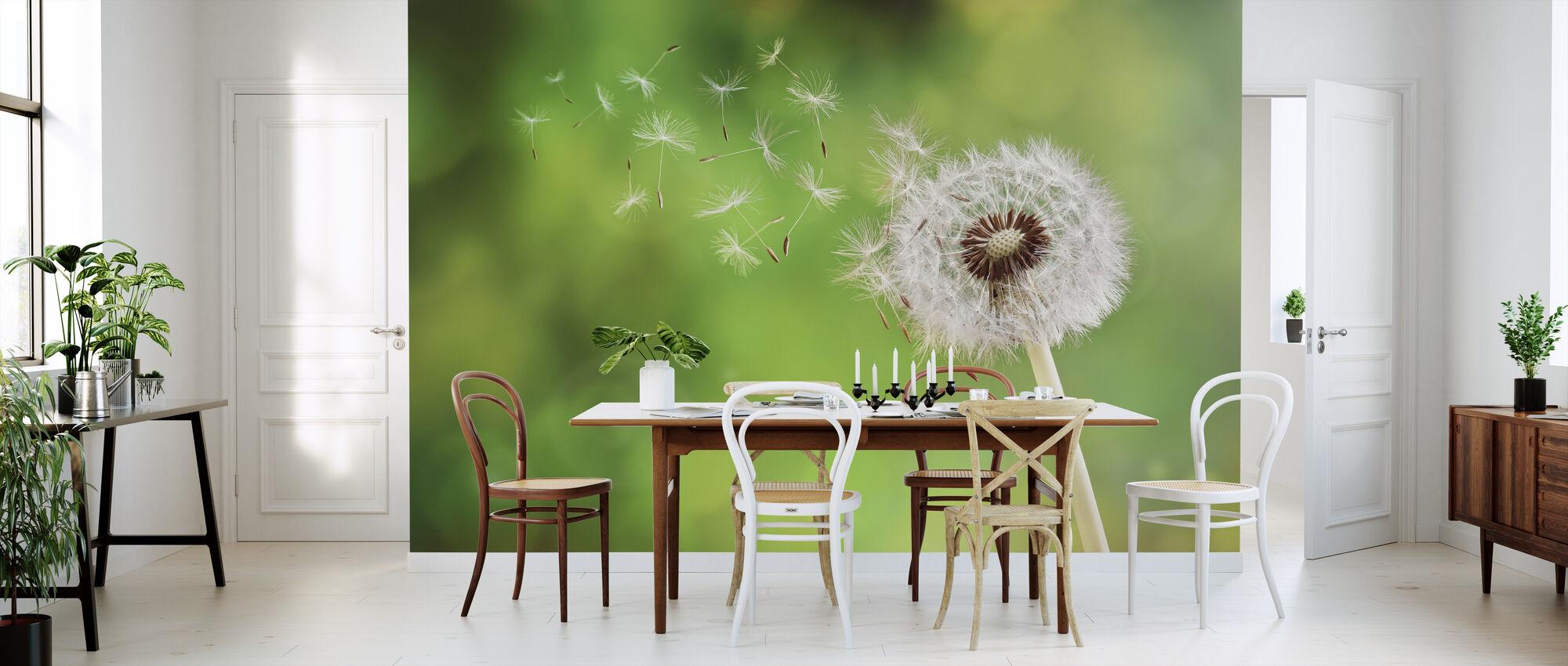 Dandelion - Wallpaper - Kitchen