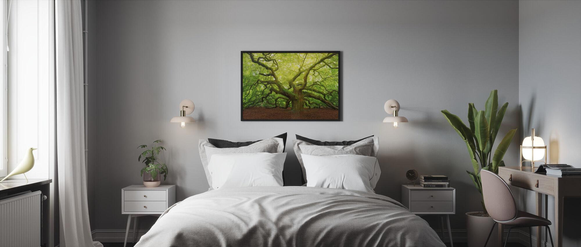 Angel Oak - Framed print - Bedroom