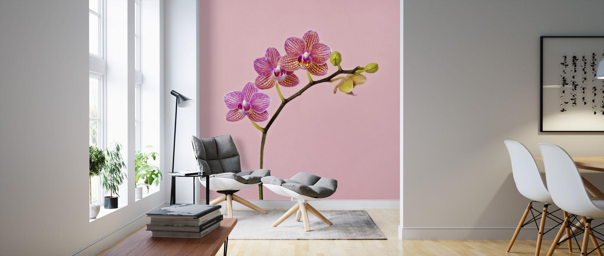 Rosa Orkide - Tapet - Stue