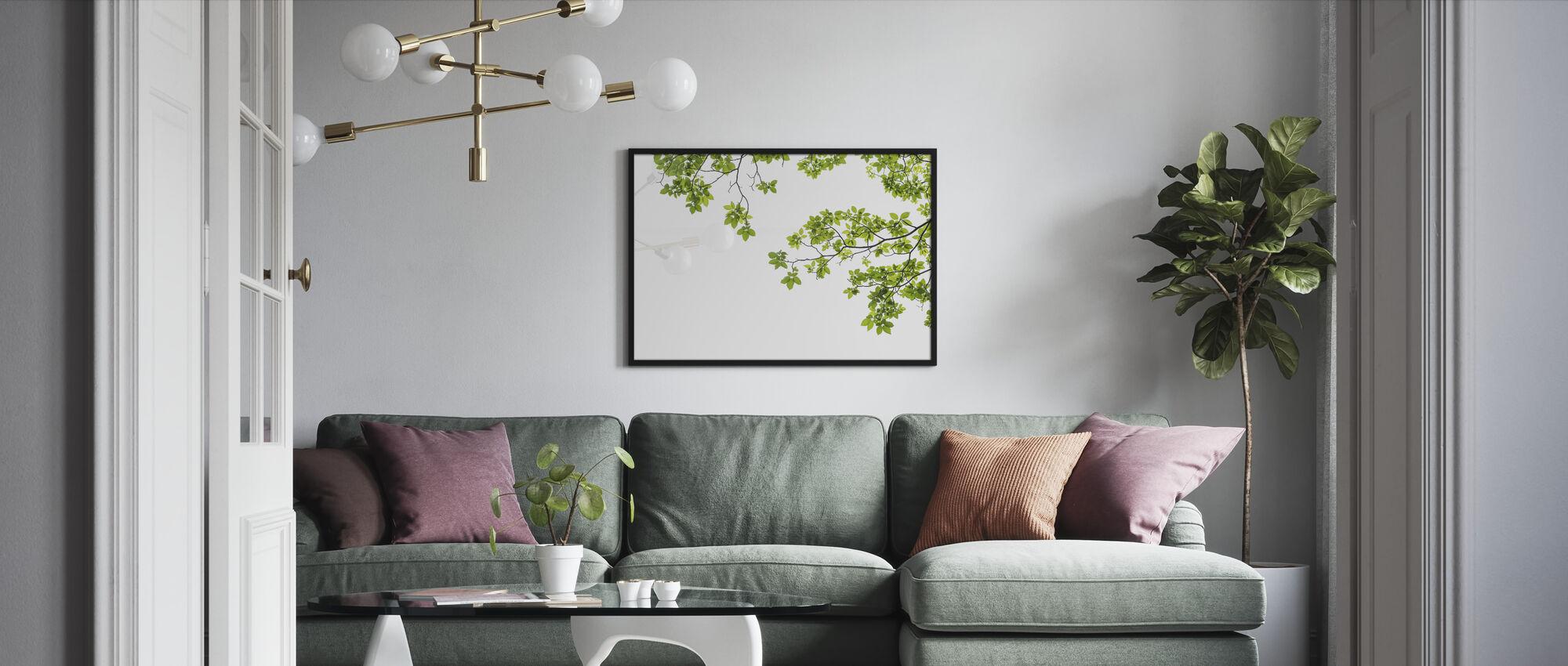 Tree Branch - Framed print - Living Room