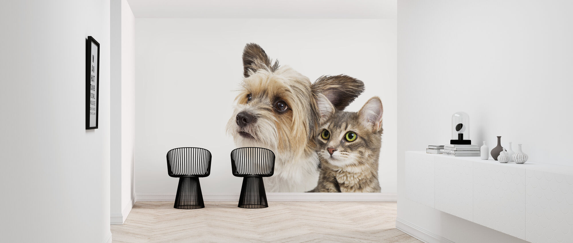 Cat and Dog - Wallpaper - Hallway