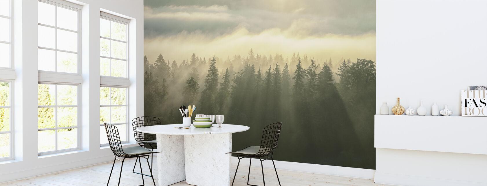 Wooded Mountans Fog - Wallpaper - Kitchen