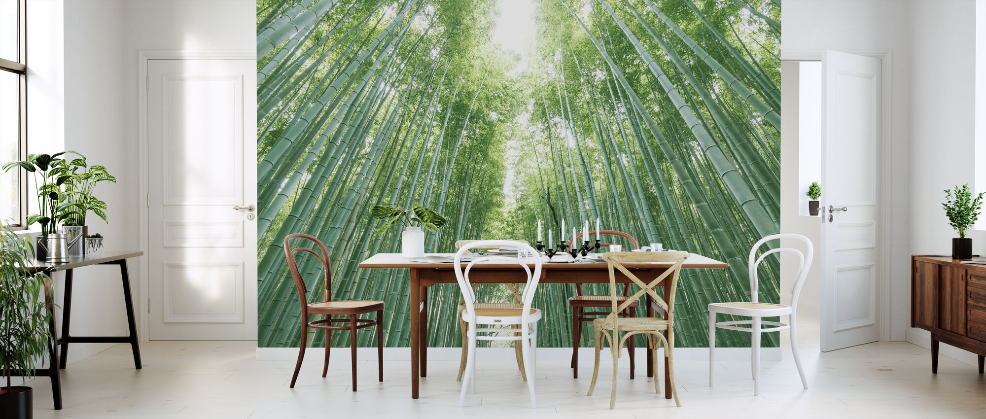 Bamboo Forest - Wallpaper - Kitchen