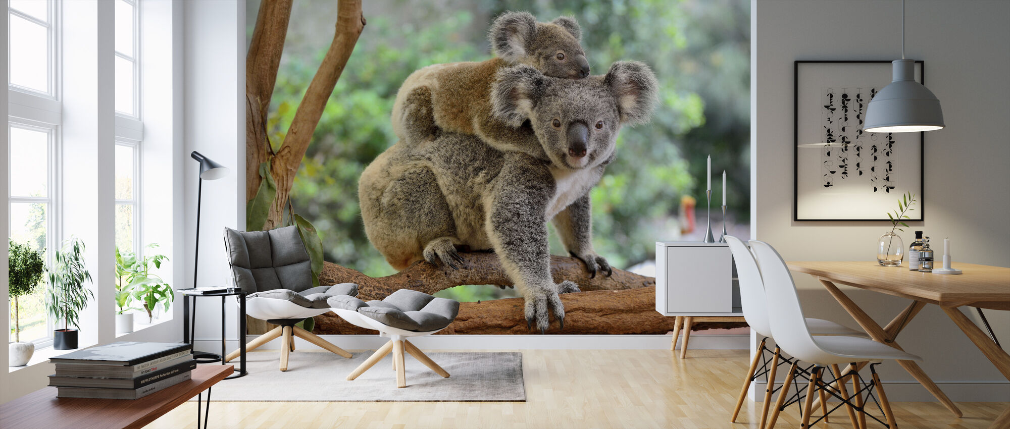 Koala with Baby - Wallpaper - Living Room