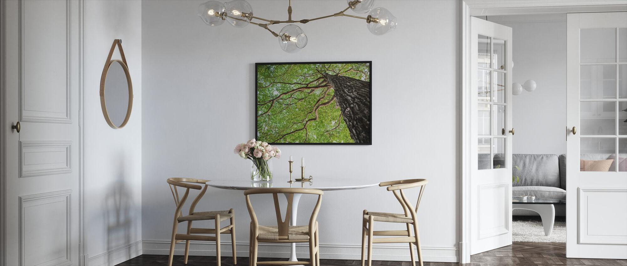 Green Leaf Tree - Framed print - Kitchen