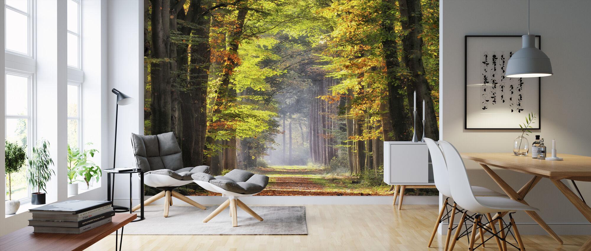 Avenue of Beech Trees - Wallpaper - Living Room