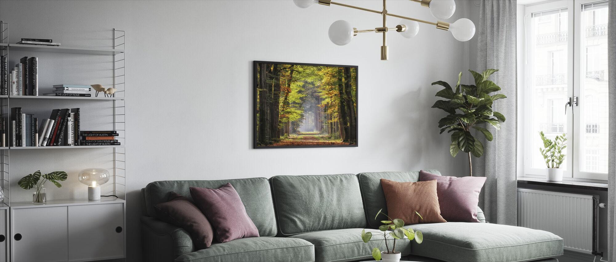 Avenue of Beech Trees - Framed print - Living Room