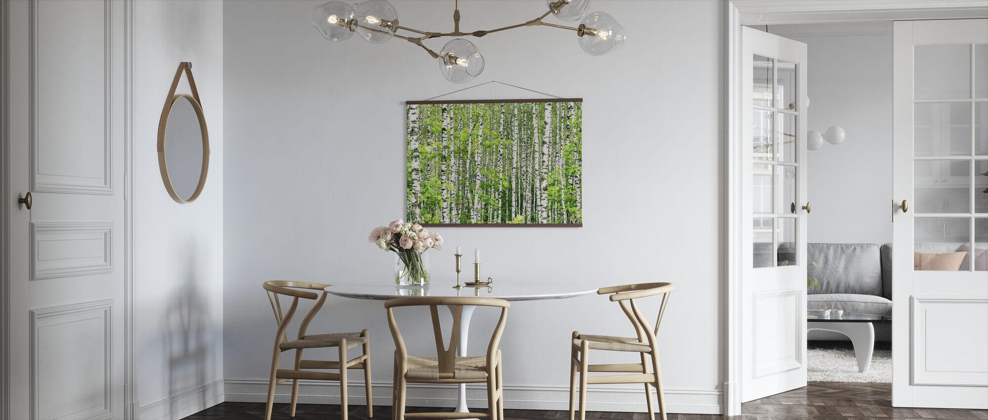 Birch Trees - Poster - Kitchen