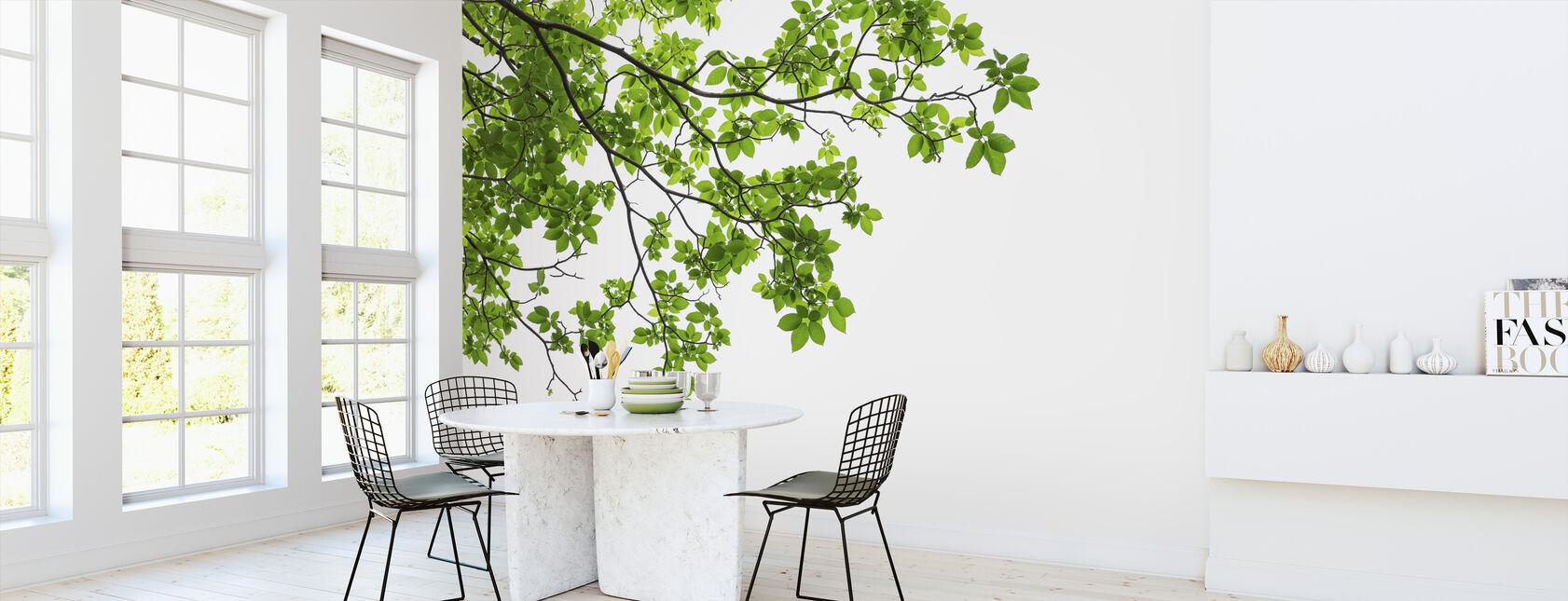 Blad och grenar av träd - Tapet - Kök