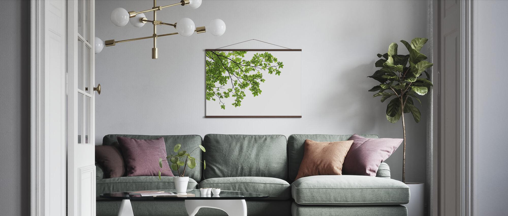 Treblader og grener - Plakat - Stue