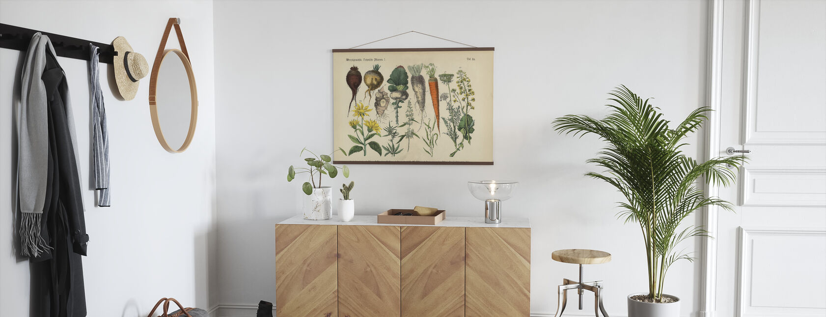 Root Crops and Vegetables - Poster - Hallway