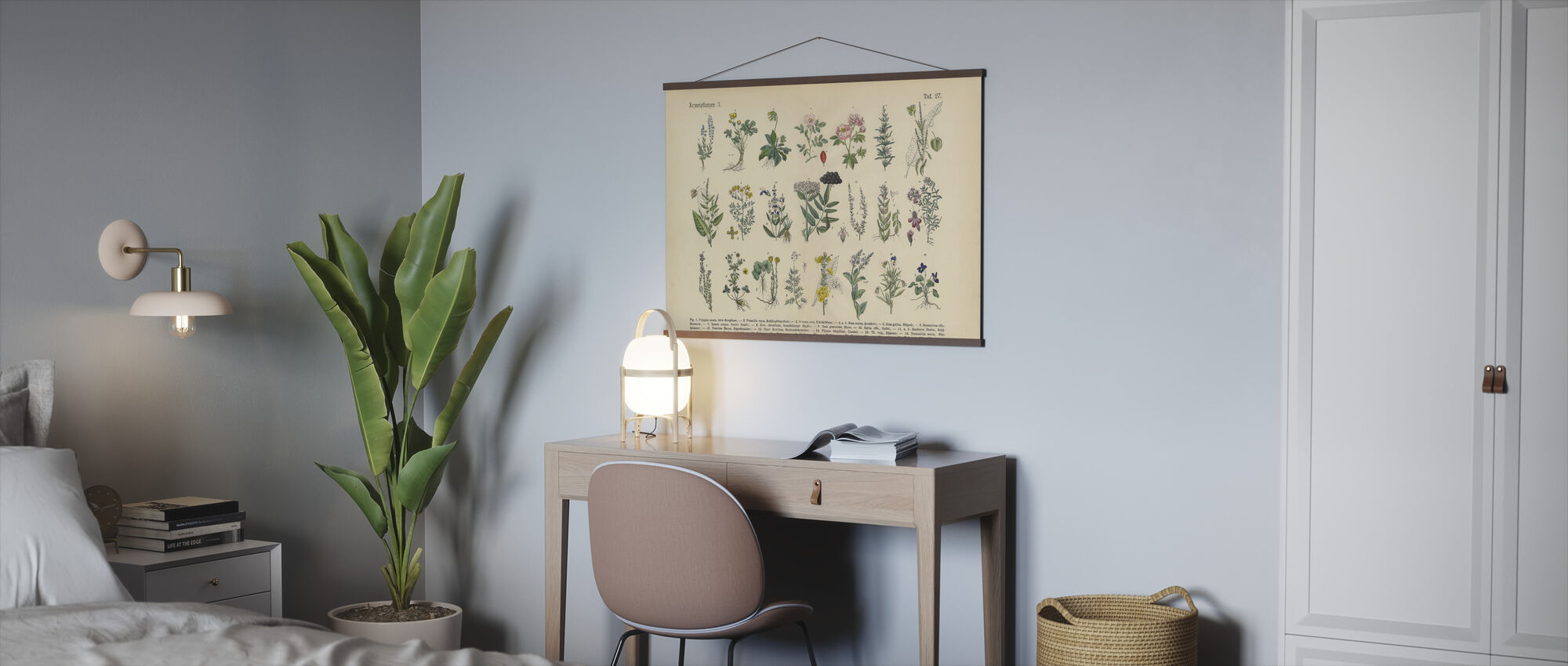 Medicinal and Herbal Plants - Poster - Office