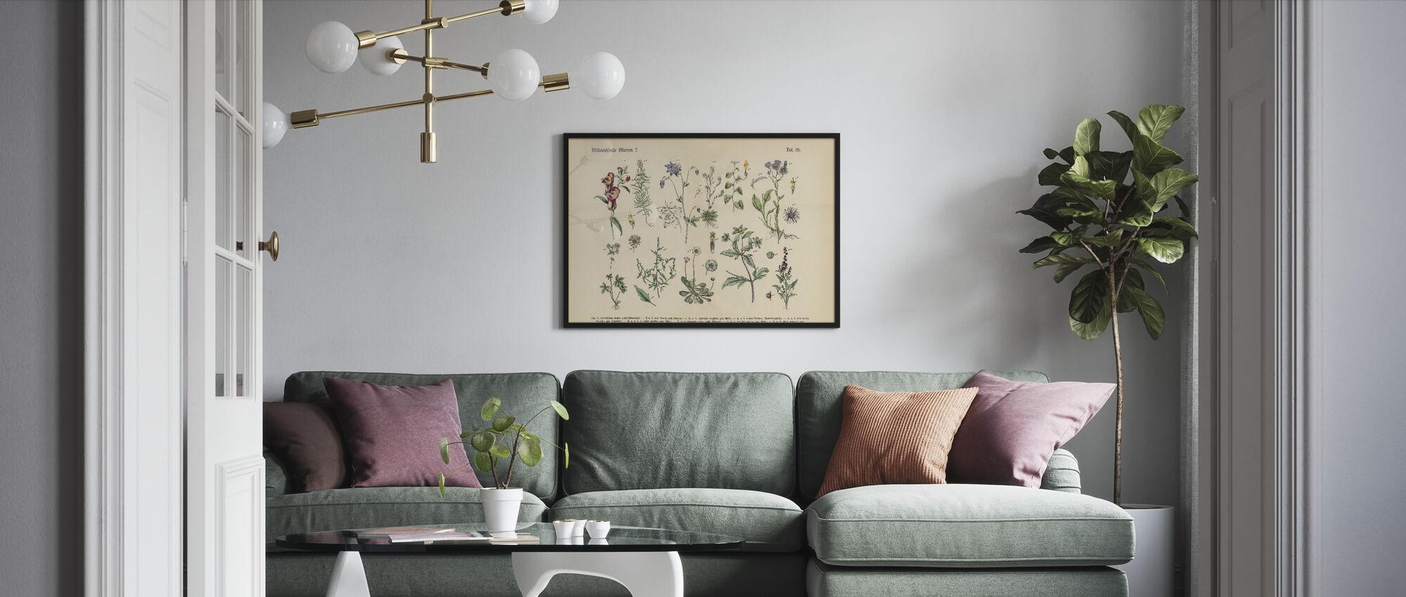 Wildflower and Medicinal Herbal Plants - Framed print - Living Room