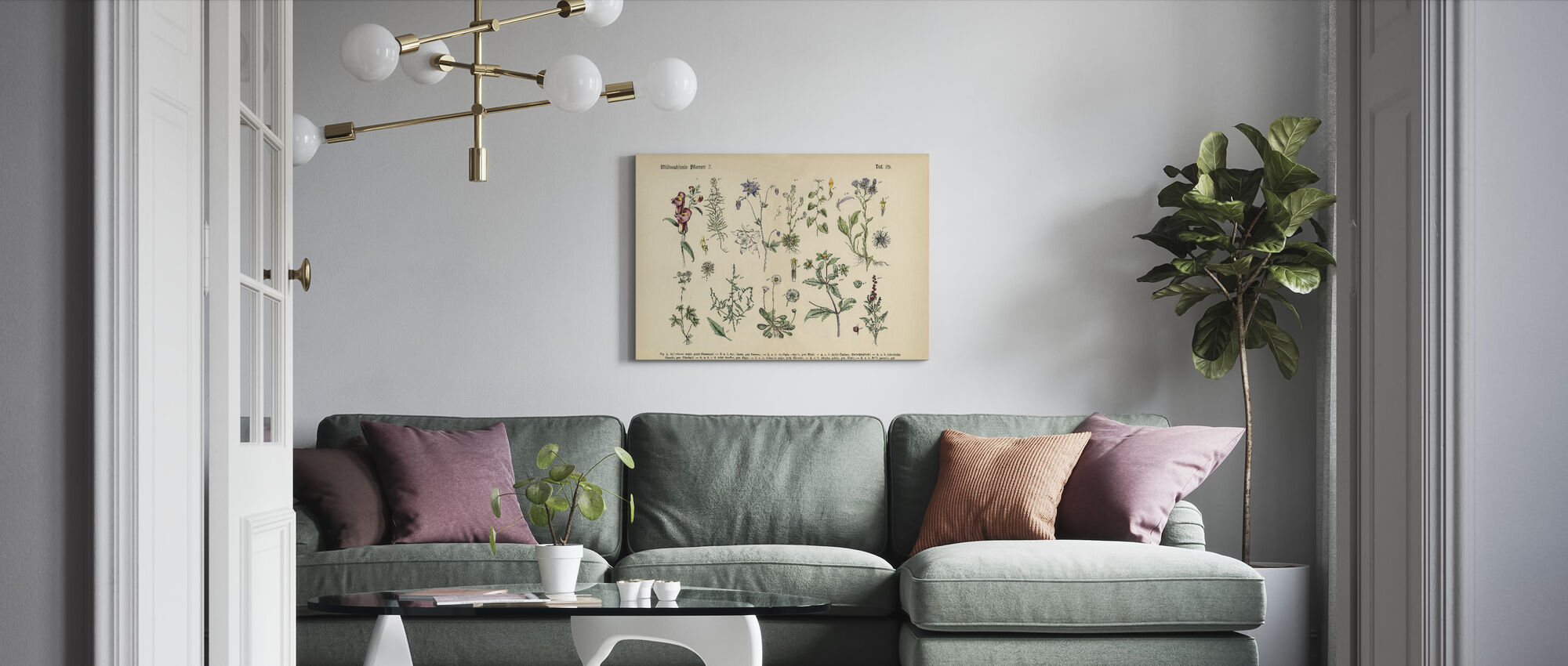 Wildflower and Medicinal Herbal Plants - Canvas print - Living Room